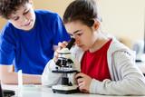 """Bakterije koje prenose bubaruse-sajt """"Dezinsekcija.net"""" i Agencija """"Eko-Kliner""""."""