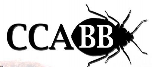CCA-BB-seminar-o-stenicama-izvestaj-