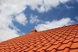 Cist i uredan krov bez ikakvih zivotinjskih vrsta na njemu su jedna od mnogobrojnih delatnosti Agencije Eko Kliners  Odbijanje i tretman golubova