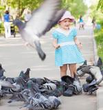 Iako naizgled lepi i prijatni za okogolubovi mogu izazvati silne probleme vlasnicima stanova sa terasom i tavanima  Odbijanje i tretman golubova