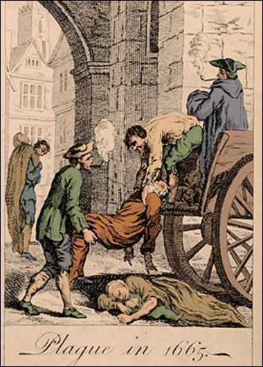 Epidemija kuge u Londonu 1666 godine u 17 veku izazvana je nakon ujeda buva koji su doneli preko okeanski brodovi iz Afrike zajedno sa pacovima.