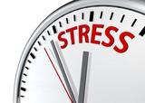 Kolicina stresa i potpuna odsustvo radne efektivnosti nakon saznanja i ujeda stenica kod radnika Evropske Unije svih profila samo godisnje kostaju trziste rada Evropske unije preko 40 miliona evra u odsustvu i bolovanju koje pacijenti-radnici su prinudjeni uzeti usled pojave stenica i ujeda istih u svom domu.Evropska unija ima specijalan program finansiranja namenskih strucnih sluzbi na pojavu i permanentnom unistavanju stenica svih 35 clanica Evropske Unije.