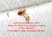 """Stenica-muzjak i zenka na unutrasnjoj strani duseka i pregledom duseka.Fotografija je napravljena 28.12.2013-e godine od strane tehnicke sluzbe Preduzeca""""Pest-Global Group DOO Beograd """" pred pocetak tretmana."""