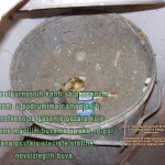 Prikaz kante koja nije zatvrena duze vreme a utvrdjeno je prisustvo zarazenih macaka buvama u podrumu.Klik na sliku gore za prikaz svih detalja.