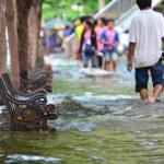 Smernice i besplatna strucna pomoc stanovnistvu ugrozenih podrucja poplavama u smislu koriscenja preparata za kompletnu dezinsekciju,dezinfekciju i post tretman nakon povlacenja voda.