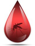 Zaprasivanje komaraca iz aviona u podrucjima ugrozenim poplavama.