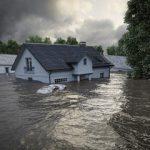 """Humanitarna akcija sajta""""Dezinsekcija.net""""-besplatna dezinsekcija i dezinfekcija svih objekata u svim mestima Srbije zahvacenim katastrofalnim i epidemioloskim poplavama"""