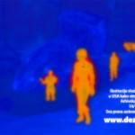 """Prikaz strucnih radova studenata biologije univerziteta Mayo Clinic u USA kako stenica """"vidi"""" svet oko sebe.Sve sto emituje toplotu coveka i ugljen dioksid je ono sto pokrece stenice tokom noci i nijedna druga stavka,niti namirnica osim ljudske krvi.Klik na sliku za detaljan pregled."""
