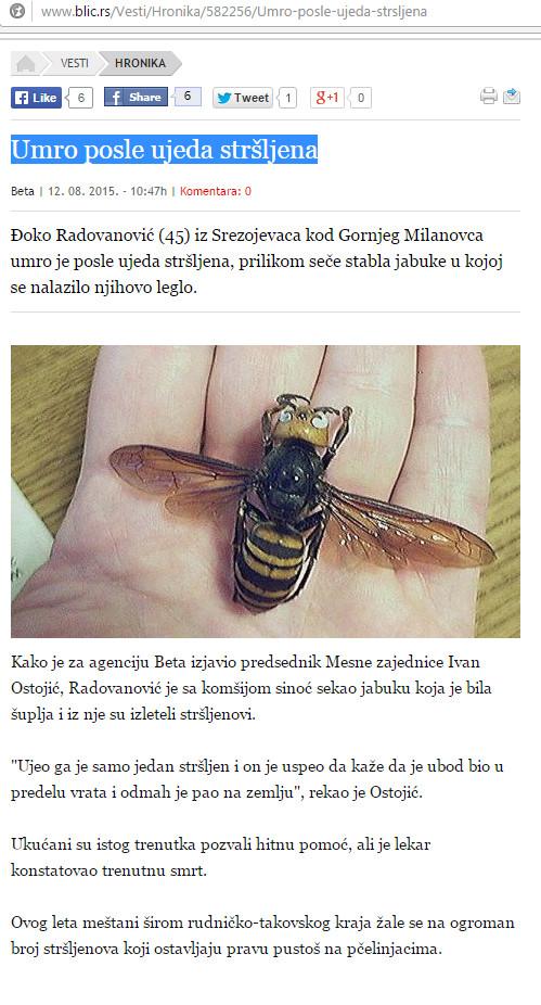 Umro_nakon_ujeda_Strsljenova_dnevni_list_Blic_12-08-2015