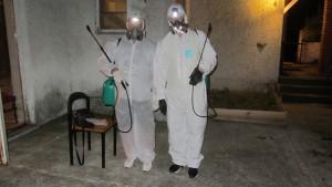 """Strucna-sertifikovana i analiticka dezinsekcija na pojavu krpelja-buva-stenica i ostalih formi krvolocnih insekata sa pismenom 6-mesecnom garancijom na brzi efektivni ucinak vec od 1590 dinara/prvih 20m2.Preduzece """"Pest-Global Group"""" DOO i sajt """"Dezinsekcija.net"""" Klik na sliku za prikaz u punoj velicini.Fotografije su vlasnistvo servisa Dezinsekcija.net i celokupnog radnog osoblja preduzeca """"Pest-Global Group"""" DOO Beograd.Proverite zasto nam je 7000+ klijenata u Srbiji i van Srbije poklonilo poverenje i sa kojima saradjujemo dugi niz godina."""