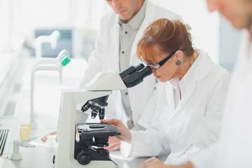 Ujed krpelja i lajmska bolest.Prikaz bakterije Borrelie Burgdefadi uvelican nekoliko stotina puta mikroskop sa tkiva uginulog psa koji nije lecen blagovremeno od ujeda krpelje.Klik na sliku za prikaz svih detalja.Sajt