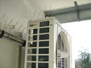 Primer pravilno postavljene zice za odbijanje golubova-primer iz nase radne prakse 2015-e godine.Zica ne povredjuje golubove,izuzetno je fleksibilna i postojana na svim vremenskim temperaturama.Klik na sliku za prikaz svih detalja.