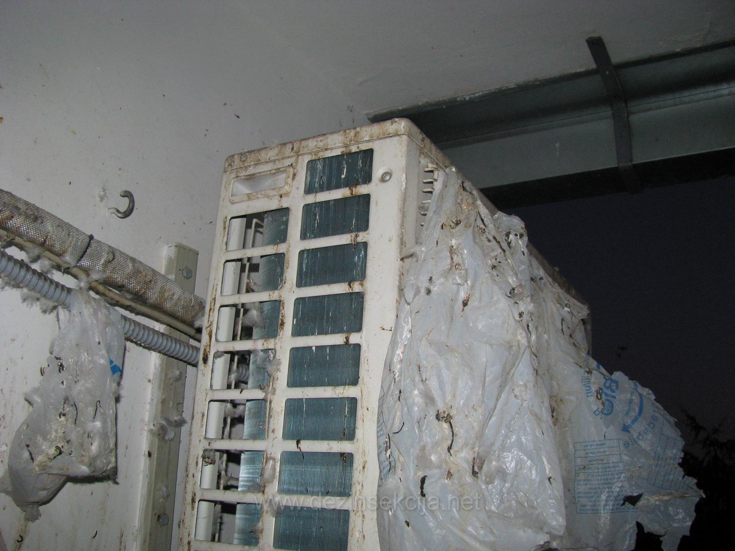 Primer sanitarne kontaminacije terasa od izmeta golubova.Klima uredjaj i kabl od klime je u totalno kontaminiran od izmeta golubova.Vlasnik stana na novom Beogradu sa cijom dozvolom je i napravljena ova fotografija je pozvao za hitnim resenjem.