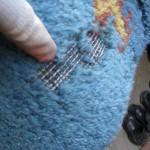 Destruktivnost moljaca u tepisima i na garderobi-reportaza sa terena 2017-03