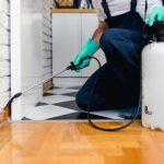 Kako unistiti bubaruse u kuhinji,stanu,kuci i radnom objektu-reportaza sa terena 2017-01