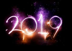 Srecna nova 2019-a godina svin citaocima i poseticioma servisa Dezinsekcija.net