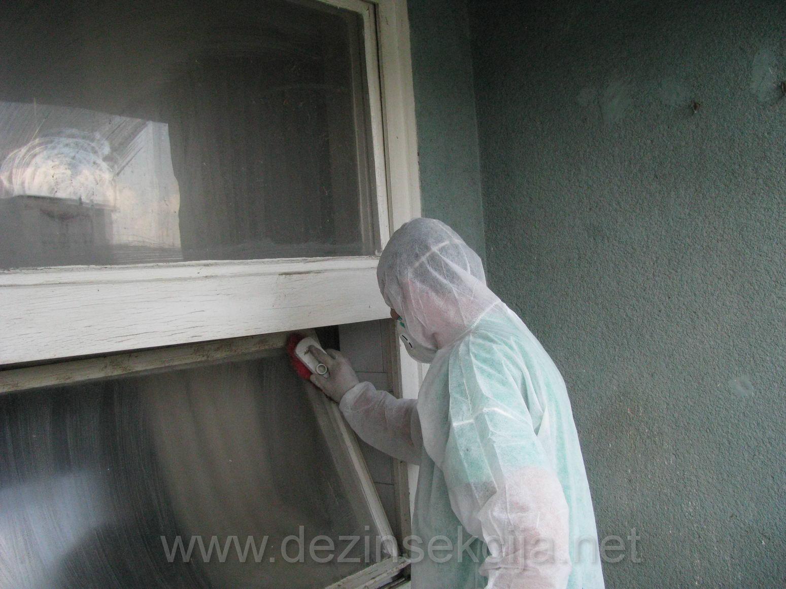Ciscenje stanova i terasa od golubova u Beogradu i Novom Sadu 01