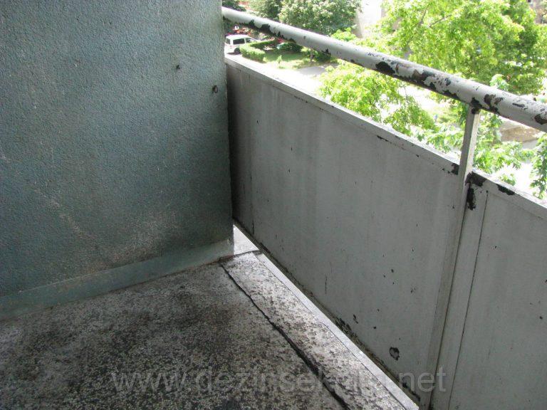 Demonstracija ociscene terase i tavana od golubova nase specijalisticke i iskusne ekipe sanitaraca,tehnologa i biologa.Novi Sad 2017-e godine.