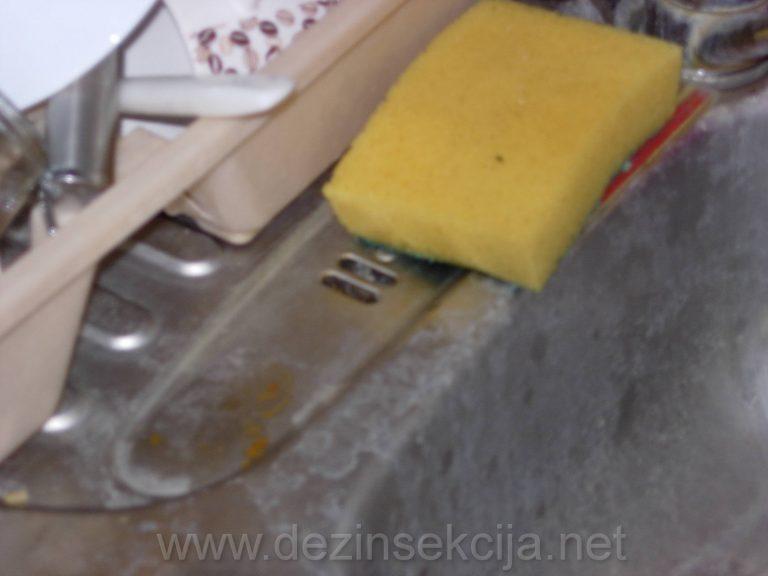 Sigurnosni odvodi za vodu su steciste bubarusa.SVuda se na navedenim fotografijama ubrizgava preparat.