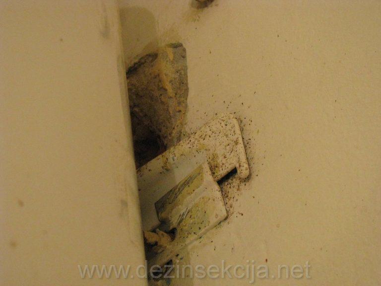 Zadnja strana bojlera u kupatilu prikaz stete koju bubaruse nanose a stanari to tolerisu i zive sa bubama ne nedeljama ne mesecima vec godinama.