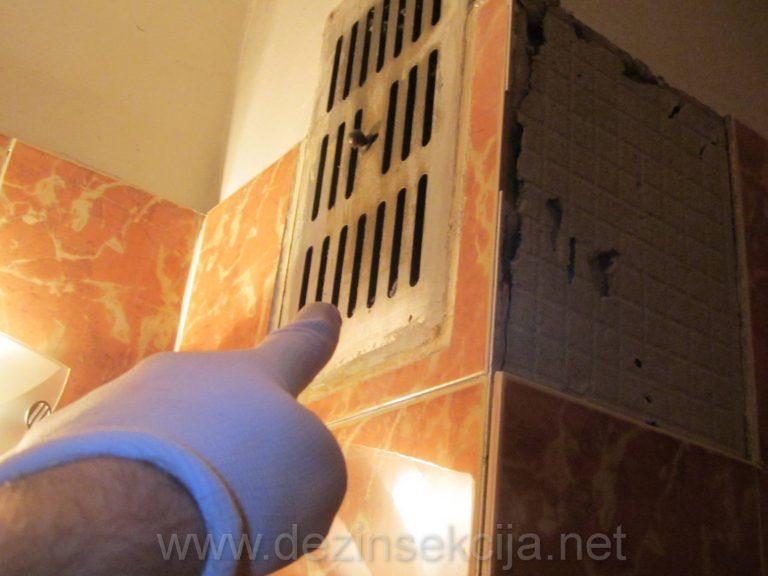 Gornja ventilacija u kupatilu je omiljeni ulaz bubarusa u stanu tokom noci kada se ugase svetla.