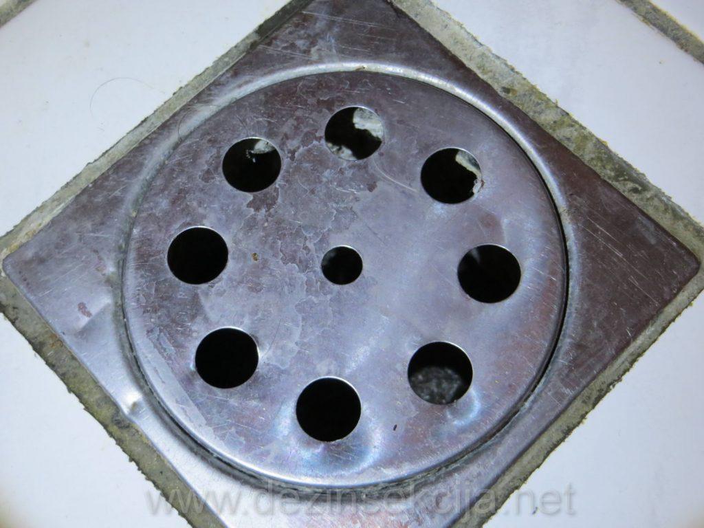 Kanalizacioni slivnici su ulazi bubasvaba u stanove i lokale.Resenje je stalno doprskavanje barem jednom mesecno sa ostavljenim besplatnim preparatom nakon tretmana ili postavka pvc propusnih mrezica tako da voda i vazduh mogu proci ali ne i insekti.