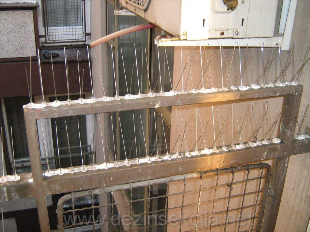 """Obezbedjivanje terasa od ulaska golubova koji su svojim izmetom privukli bubasvabe u stanu.Hranjenje golubova na terasama i odomacivanje golubova je sanitarni problem kasnije cega stanari nisu svesni.Po uocenim bubasvabama zovu i pitaju""""Pa kako to odjednom bubasvabe?"""".Postavkom flexi zica za trajno odbijanje i rasterivanje golubova na terasama smo sigurni da automatski i prestaje nastanjivanje bubasvaba koji se hrane ostavljenim izmetom golubova u fazi mirovanja dok su na simsovima i ivicama terasa.Fotografija iz radne prakse nasih DDD tehnologa Novi Beograd 2015-e godine.Klik na sliku za prikaz svih detalja.Po postavljenim tehnickim resenjima je prestalo nastanjivanje golubova i pratecih virusa i infekcija po disajne organe stanara."""