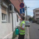 Dezinsekcija crnih bubasvaba u Beogradu i Novom Sadu reportaza 01