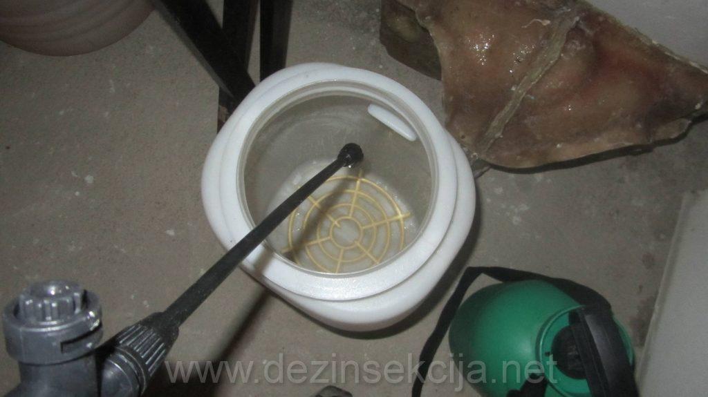 Napustena burad i kace od tursija u podrumima su omiljeno steciste podrumskih buva jer imaju vlagu i odsustvo svetlosti sto je savrsena podloga za razvoj i prezivljavanje buva.
