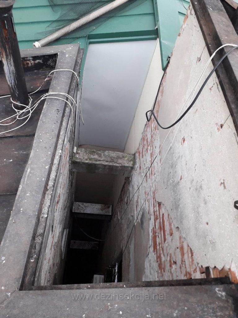 Mesto gde golubovi ulaze u zgradi.