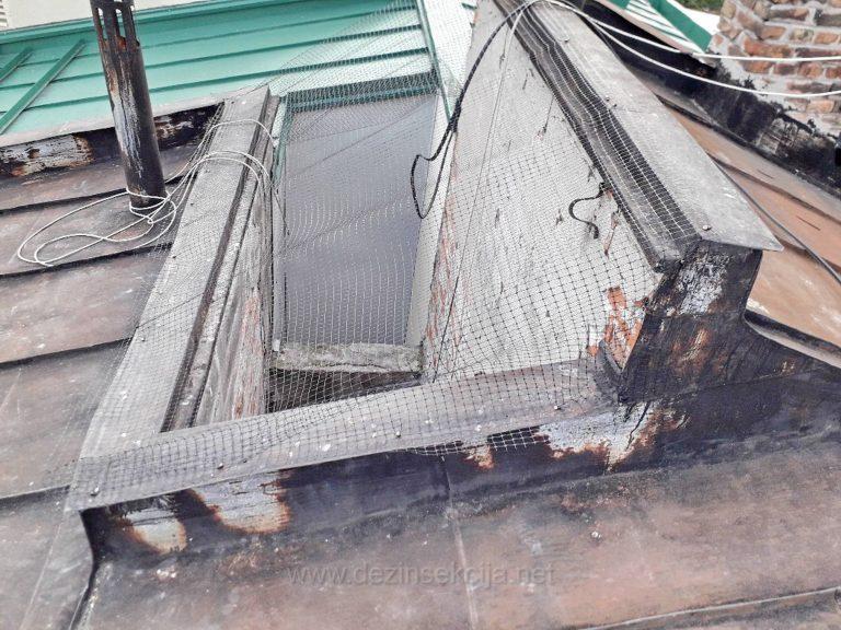 Najveci problem u postavci mreza u odbijanju i rasterivanju golubova je sama postavka i detaljan pristup celom problemu od strane vise podizvodjackih gradjevinskih,fasaderskih i sanitarnih sluzbi sve u jednom danu.