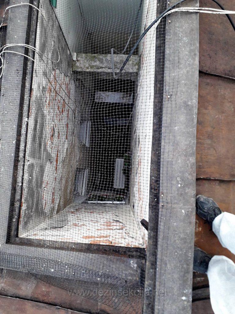 SVetlarnik je 100% zasticen.Nastanjivanja golubova nema vise u toj zgradi ali odmah prelaze na sledecoj gde mogu naci prostora za nastanjivanje.Tako da obezbedjivanje zgrada od nastanjivanja golubova barem u Beogradu i Novom Sadu je posao od jutra do mraka jer jedan zadovoljan Klijent je automatski preporuka drugom zadovoljnom Kljentu,stanaru ili profesionalnom upravniku Beogradskih stambenih jedinica.