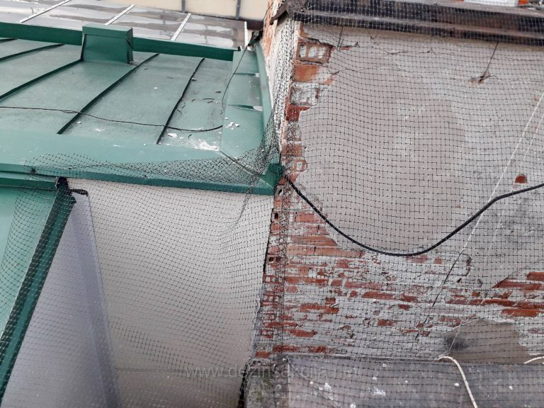 KAko odbiti golubove sa terase i krovova zgrada?PRikaz nasih resenja maj 2019.