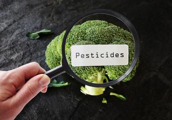Nekontrolisana upotreba pesticida u Srbiji