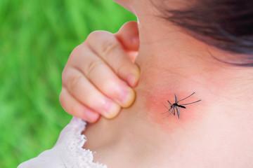 Postalo je kritično: Grad Beograd kreće na komarce i iz vazduha