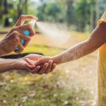 Komarci u Novom Sadu – hiperprodukcija na nivou elementarne nepogode