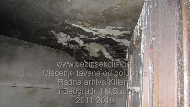 Stanje tavana nakon izostanka renoviranja u jednoj od zgrada u Smederevu nakon pregleda.