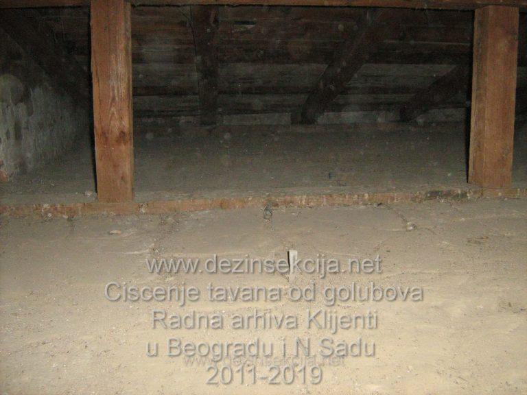 USpesno ociscen tavan zgrade Stevana Sremca 18,Centar Beograd nakon visednevnog rada.Svaki milimetar tavana je detaljno ociscene.Klik na sliku za prikaz svih detalja.