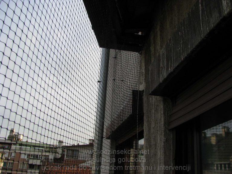 Postavka zastitne sertifikovane mreze od ulaska golubova.