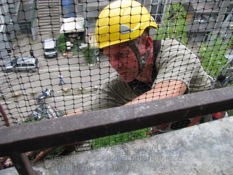 Specijalisticki tim alpinista na svom radnom zadatku ciscenja i blokade ulaska golubova u vidu namenske pigeon mreze.