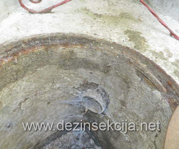 Prikaz gde bubašvabe žive.Napušteni i neodržavani cevi u kanalizaciji.