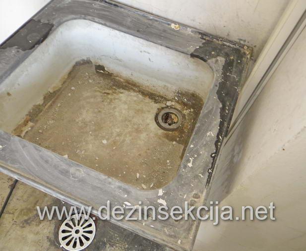 Zapušten umivaonik od bubašvaba.