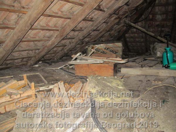 Čišćenje od izmeta golubova tavana u Beogradu,Novom Sadu,Vojvodini i ostalim gradovima u SRbiji.Koristimo sertifikovanu radnu opremu i strogo profilisane i selektovane radne izvršioce iz domena sanitarne struke.