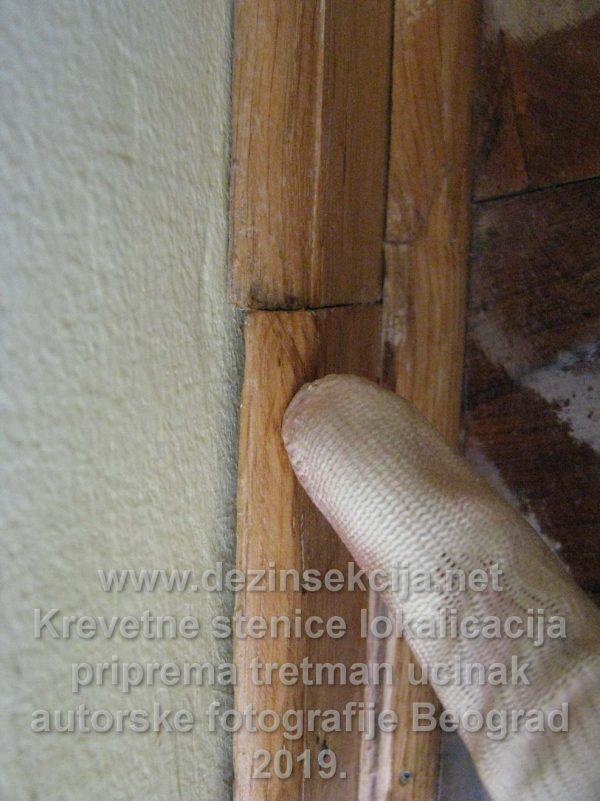 Lajsnice i štokovi od vrata su jedno od čestih skloništa stenica.
