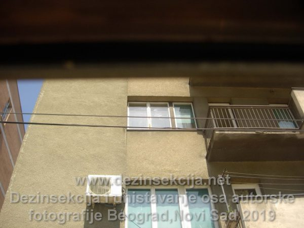 Pregled zgrade fasade pred tretmanom Beogradsko naselje Čukarica 2019 e godine.