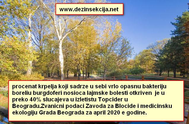 Krpelji sa boreliom burgdoferi izazivacem lajmske bolesti su uoceni i u Topcideru na uzorku od preko 40% krpelja opstina Savski venac Beograd tokom aprila 2020 e godine.