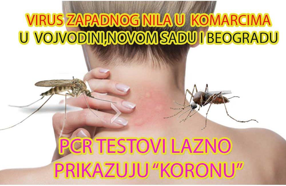 Virus Zapadnog Nila u ujedima komaraca u Beogradu,Novom Sadu,Vojvodini i Srbiji.Preventivno zaprašivanje i dezinsekcija na pojavu komaraca su jedini način da sačuvate svoje zdravlje,sebe,svojih ukućana,kolega,kućnih ljubimaca i domaćih životinja.Promotivne cene prskanja i zaprašivanja na pojavu komaraca u toku leta 2020 e.Spasite život sebi i dalje infekcije od ujeda komaraca sertifikovanim preparatima za komarce i izvršenjem od strane starijeg iskusnog radnog osoblja.